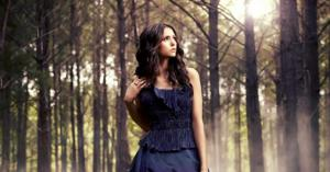 the-vampire-diaries-6-nina-dobrev-elena-gilbert