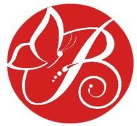logo-butterfly-pallina-farfalla